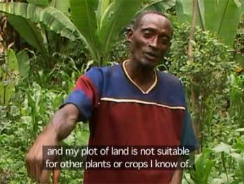 A farmer explaining why he must grow khat to survive