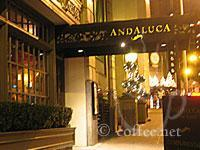 Front of Andaluca